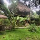 flutterbyhouse