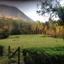 arenal trail
