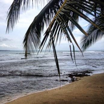 playa - puerto viejo